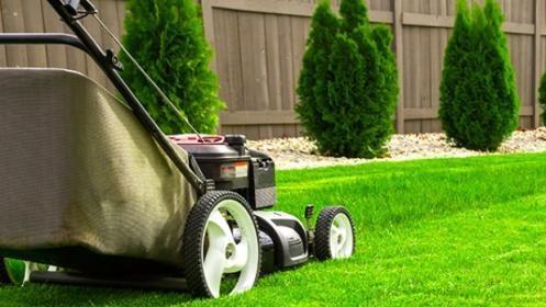 !!Pon tu jardín en manos de profesionales¡¡