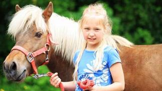 Elige entre paseo en pony o una ruta a caballo con clase teórica